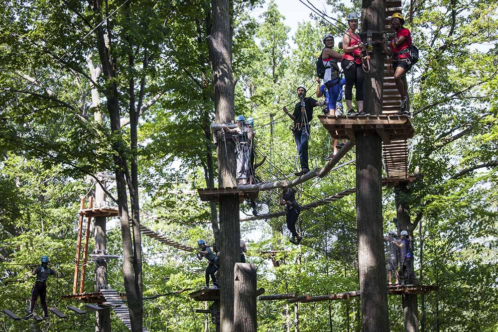 Treetop Trekking Adventure