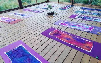 Pura Vida Soul Institute yoga meditation