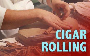 Cigar Rolling
